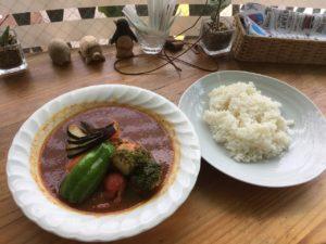 スープカレー カムイ:チキン野菜カレー